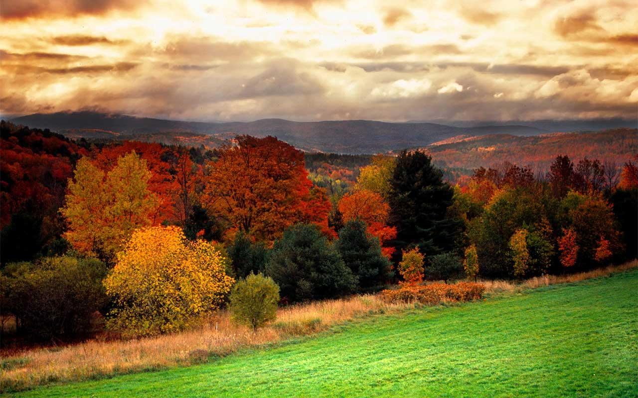 Pittsford, VT Alcohol And Drug Rehab Centers
