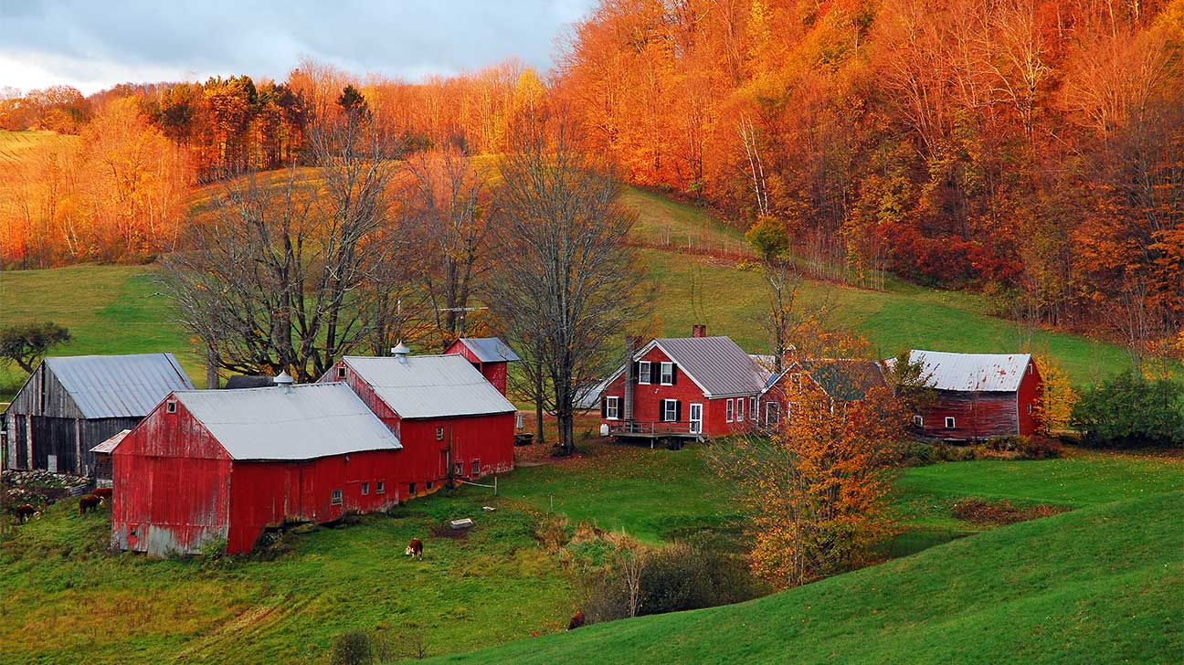 Vermont Alcohol And Drug Rehab Centers